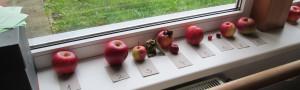 Jablko roku