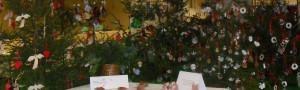 Který vánoční stromek bude nejkrásnější?