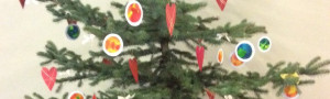 Vánoční stromečky na Florii