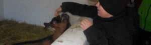 Návštěva SOŠ veterinární