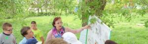 """Akce školní družiny – """"Chráníme lesy"""""""