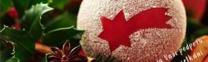 Den otevřených dveří s vánočním jarmarkem